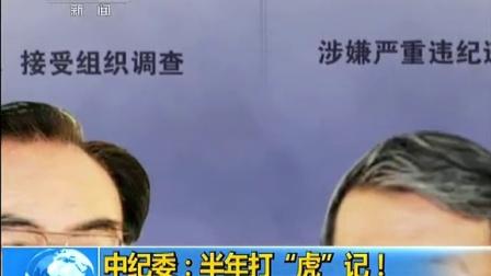 中纪委 半年打 虎 记 140701