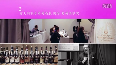 意大利联合葡萄酒展 国际 2014年 - 2015年