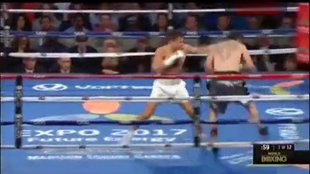 哈萨克斯坦职业拳击排名第几