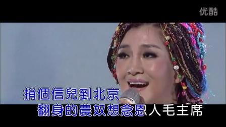 远飞的大雁(现场)(1)