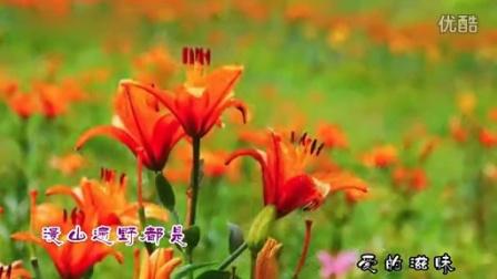 春天-爱在山花烂漫时