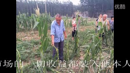 山东单县东郊村东关村两村书记强制征收农民土地
