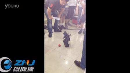 北京智能佳 达尔文机器人演示视频