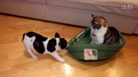 这是我的床,你快还给我!
