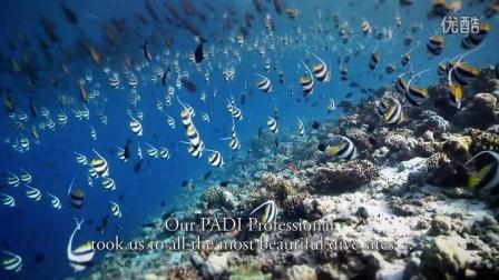 跟 PADI 一起潜水趣 (PADI Fun Dive)