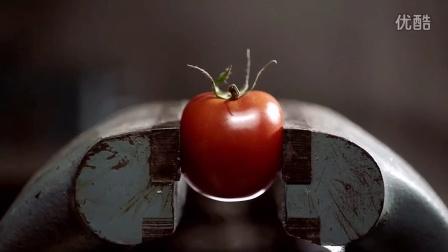 日本可穿戴西红柿机器人:跑步时给你能量