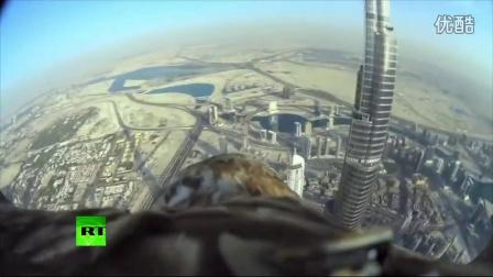 实拍老鹰身背摄像机俯拍迪拜壮丽美景