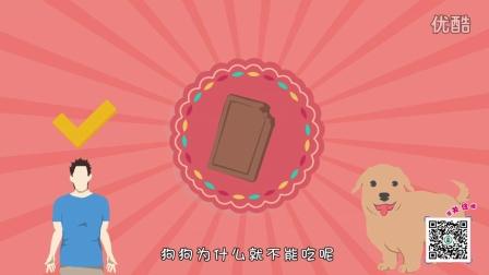 狗误食巧克力会怎样?