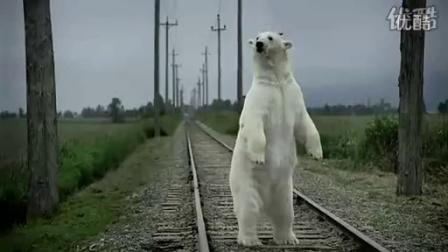 创意广告!北极熊【日产汽车广告】