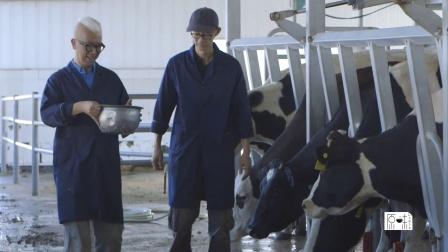 《原味》第二集 牛奶很忙