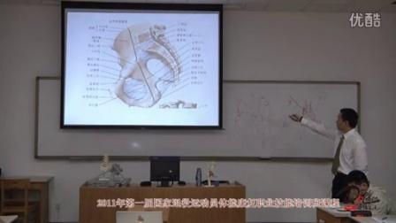 《骨盆关节的功能解剖》骨盆关节的韧带