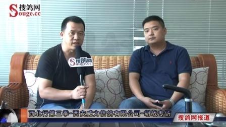西北行第三季-西安威力信鸽有限公司-胡战专访