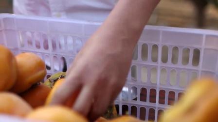 《原味》第五集 柿饼突击