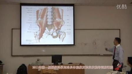 《骨盆关节的功能解剖》与坐骨神经相关的肌肉