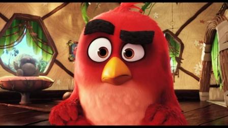 3D动画大电影《愤怒的小鸟》首支预告片