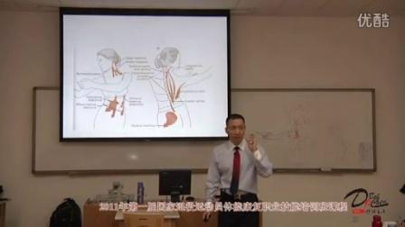 《骨盆关节的功能解剖》结合专项动作分析