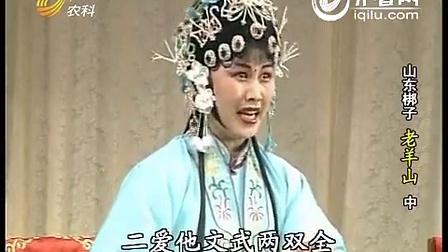 山东梆子老羊山全剧(陈凤英)