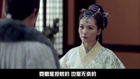 广式妹纸吐槽 2015:《琅琊榜》深入分析梅长苏的感情 220