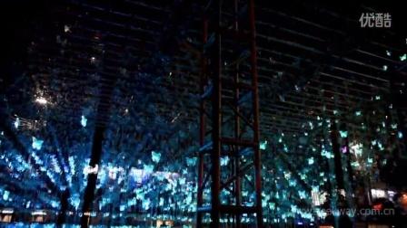 大型LED三维显示阵列——彩立方蝴蝶灯阵亮相2015古镇灯光文化节