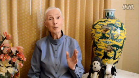 Introducing Jane Goodall's Good for All News