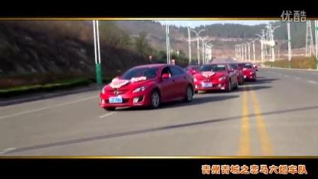 青州青城之恋马六婚车队