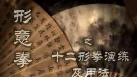 高银鹤老师形意拳演练实用图谱教学