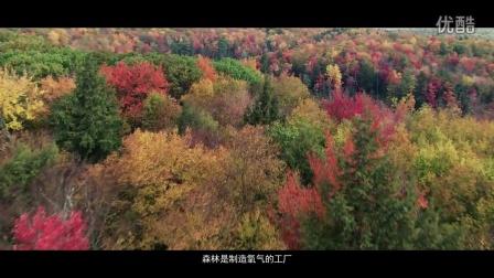 67-留一个明天给孩子-中国台湾网