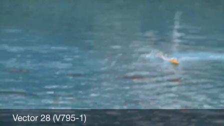 欧兰斯795-1 Vector28