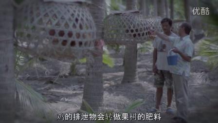 感人泰国广告 Google 搜寻:回家