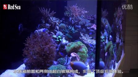 红海Max® - S LED系列 终极版多尺寸珊瑚礁岩系统