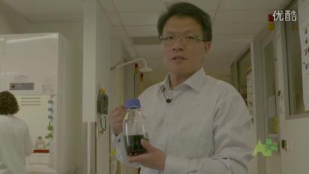 蒙纳士大学科学家研发出新型材料