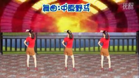 阿娜广场舞【嗨起来】背面DJ