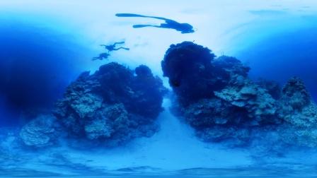 全景深潜视频——潜水圣地伯利兹