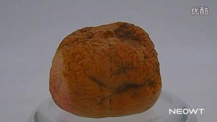 桃子变质过程
