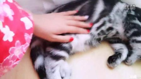 斗鱼643626 YG女团2016年8月23日16时24分5秒直播间直播 录像