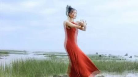 太极女神叶泳湘白鹤晾翅出水姿势优美