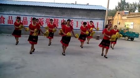 禹城市伦镇镇台楼姐妹广场舞