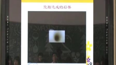 《青春红绿灯》教学课例(高一心理健康,深圳市第一职业技术学校:黄燕娜)