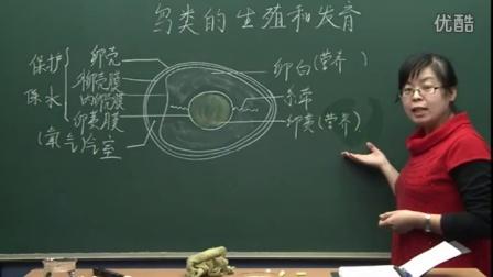 初中生物人教版八年級《鳥類的生殖和發育02》名師微型課  北京譚榮譽