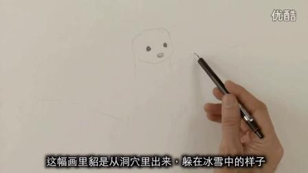 【绘笔万象】如何画一只貂