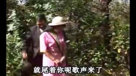 云南山歌剧表哥戏表妹全集