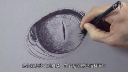 【绘笔万象】爬行动物的眼睛。再看,再看我就把你给擦掉