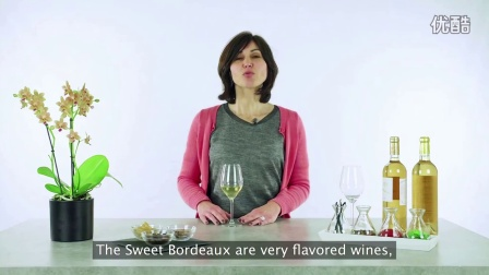 Wine Tasting_ Smell - Sweet Wine Course #10