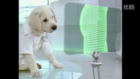 Cottonelle Institute Cute White Puppy 2009 TV Commercial