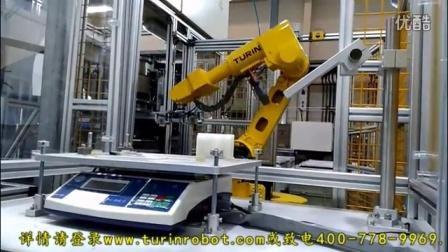 图灵机器人大众汽车盖板检测上下料视频
