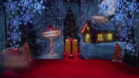 囧闻一箩筐:萌哭 动物界圣诞晚会闪亮登场 597