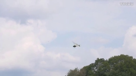 ALZRC Devil 380 FAST FBL RC Helicopter Vol.6 YOKO