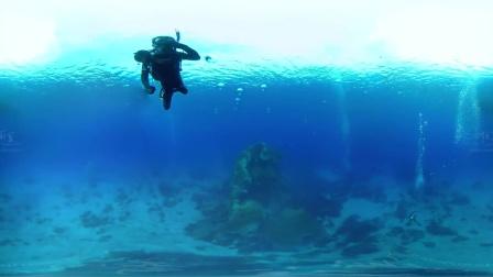 """台湾绿岛潜水""""大蘑菇""""珊瑚礁360°拍摄"""