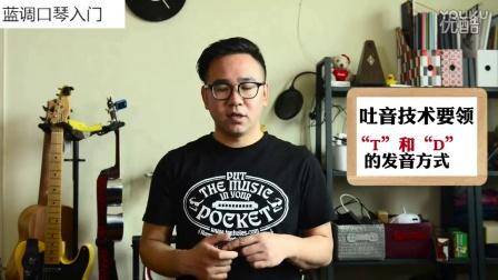 通宝口琴官网__青花瓷口琴简谱