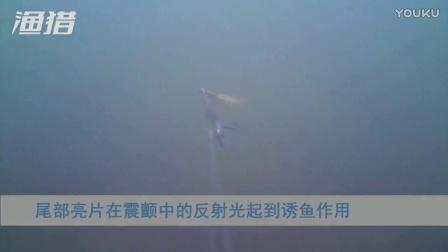 在震颤中寻找抛投的意义--渔猎VIB水下实测